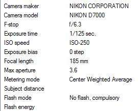 نام: FVex.jpg نمایش: 661 اندازه: 76.2 کیلو بایت