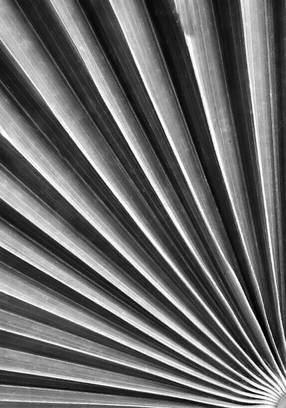 نام: Untitled23_1.jpg نمایش: 468 اندازه: 223.9 کیلو بایت